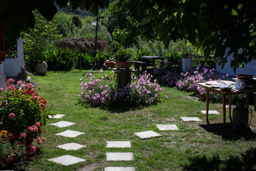 klio's honey farm the garden1
