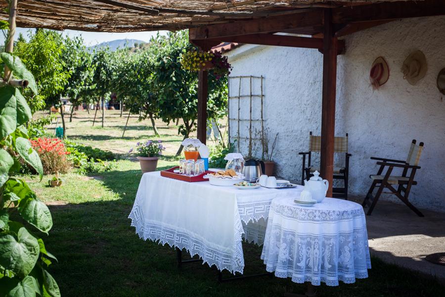 klio's honey farm the welcome table
